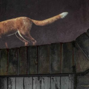 Museum of London: Beasts of London