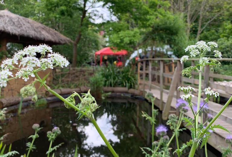 Sydeham Gardens